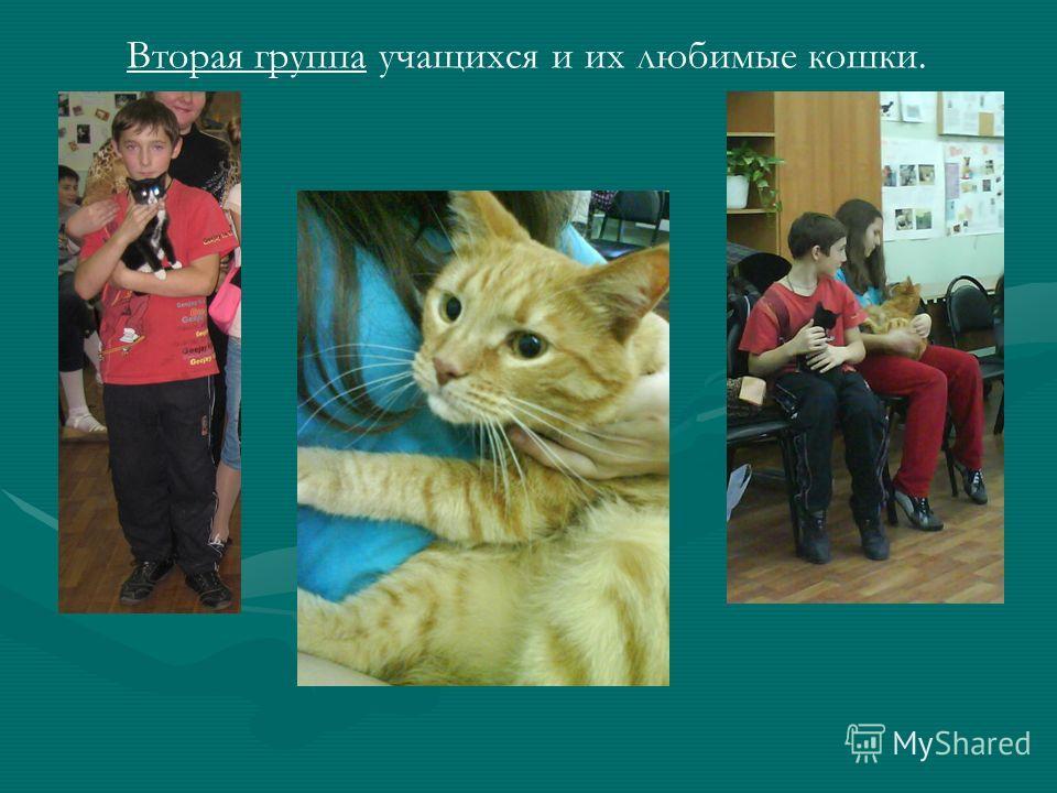 Вторая группа учащихся и их любимые кошки.