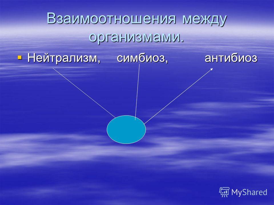 Взаимоотношения между организмами. Нейтрализм, симбиоз, антибиоз Нейтрализм, симбиоз, антибиоз