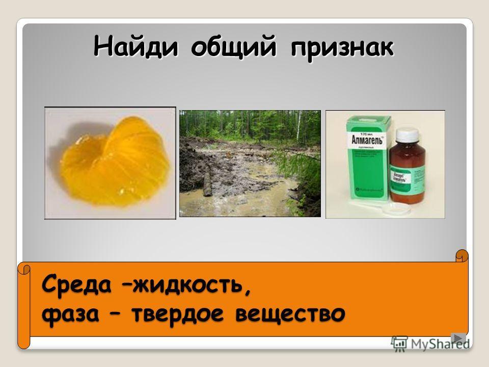 Среда –жидкость, фаза – твердое вещество Найди общий признак
