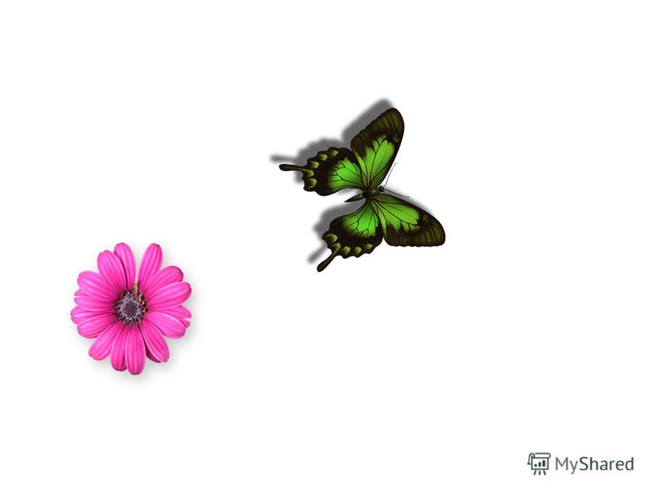 Прежде чем мы начнём нашу совместную работу, прошу вас прослушать одну притчу: Жил - был мудрец, который всё знал. Один человек хотел доказать, что мудрец далеко не всё знает. Зажав в ладонях бабочку, он спросил: «Скажи, мудрец, какая бабочка у меня
