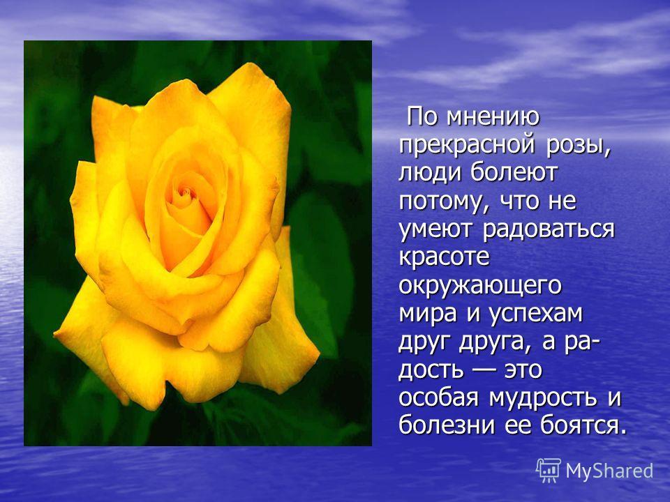 По мнению прекрасной розы, люди болеют потому, что не умеют радоваться красоте окружающего мира и успехам друг друга, а ра дость это особая мудрость и болезни ее боятся. По мнению прекрасной розы, люди болеют потому, что не умеют радоваться красоте