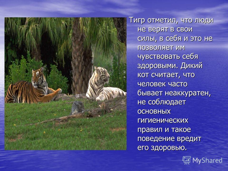 Тигр отметил, что люди не верят в свои силы, в себя и это не позволяет им чувствовать себя здоровыми. Дикий кот считает, что человек часто бывает неаккуратен, не соблюдает основных гигиенических правил и такое поведение вредит его здоровью.