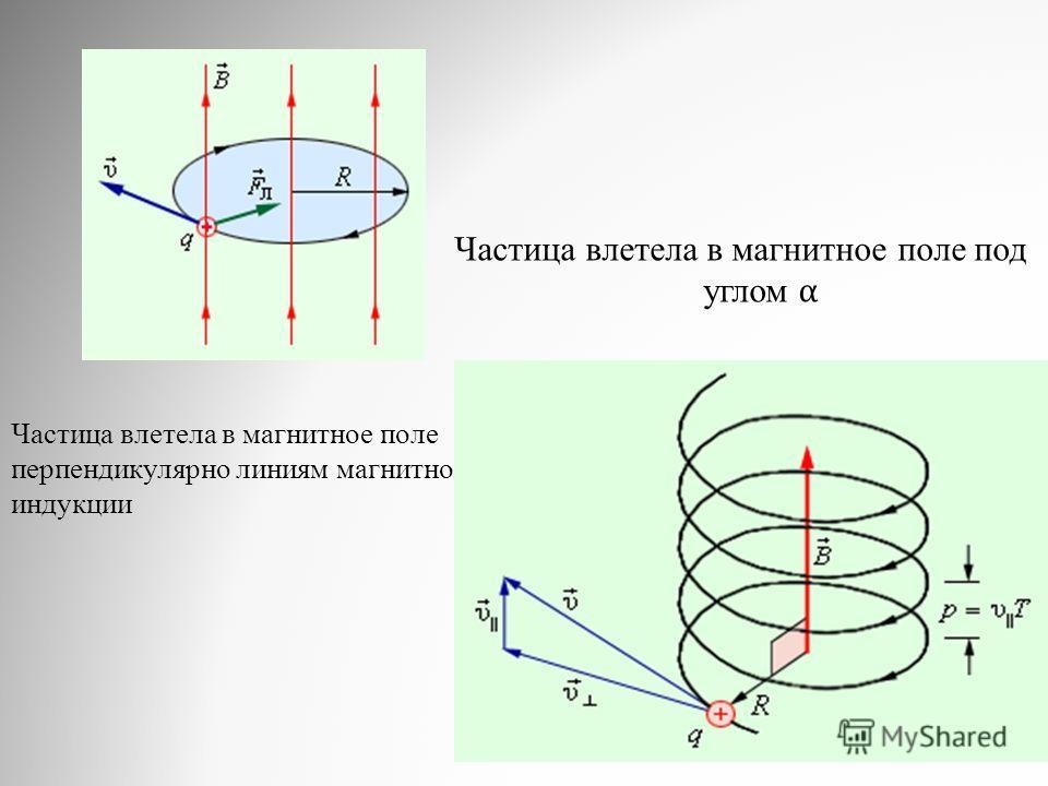 Частица влетела в магнитное поле перпендикулярно линиям магнитной индукции Частица влетела в магнитное поле под углом