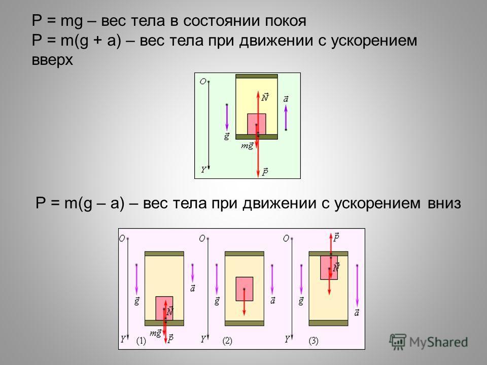 P = mg – вес тела в состоянии покоя P = m(g + a) – вес тела при движении с ускорением вверх P = m(g – a) – вес тела при движении с ускорением вниз