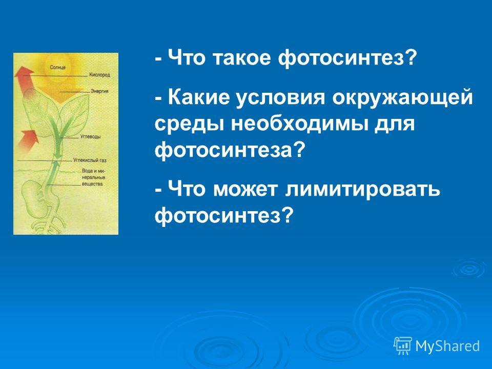 - Что такое фотосинтез? - Какие условия окружающей среды необходимы для фотосинтеза? - Что может лимитировать фотосинтез?