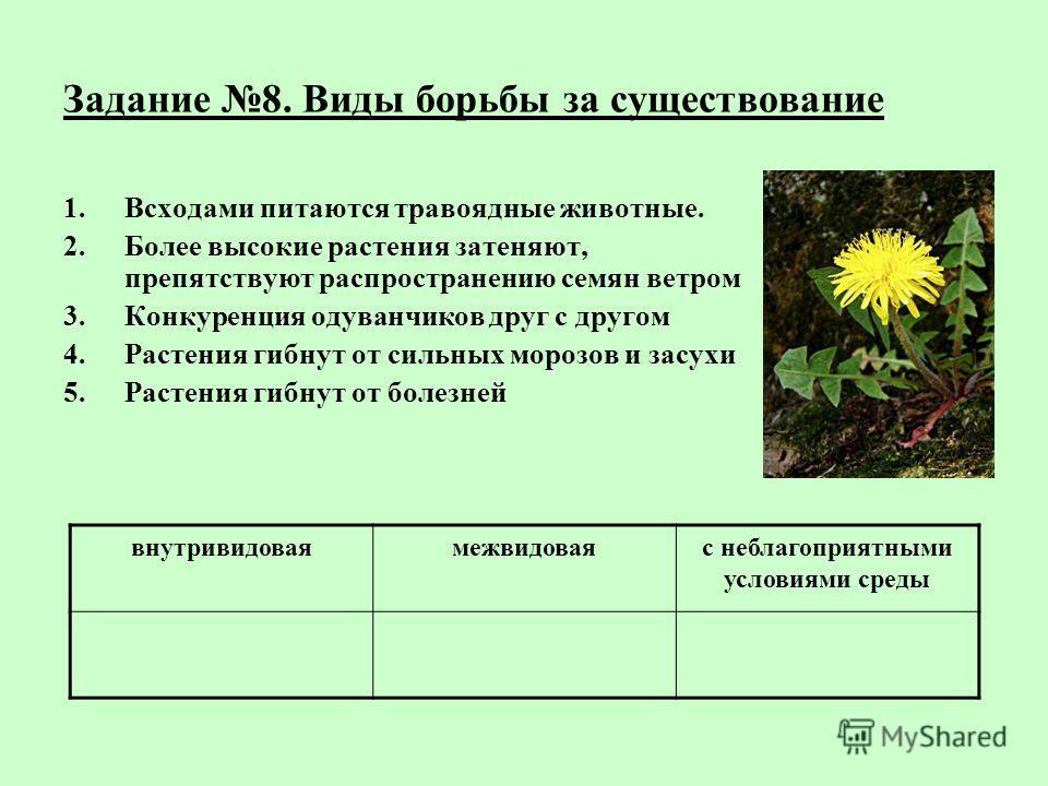 Задание 8. Виды борьбы за существование 1.Всходами питаются травоядные животные. 2.Более высокие растения затеняют, препятствуют распространению семян ветром 3.Конкуренция одуванчиков друг с другом 4.Растения гибнут от сильных морозов и засухи 5.Раст