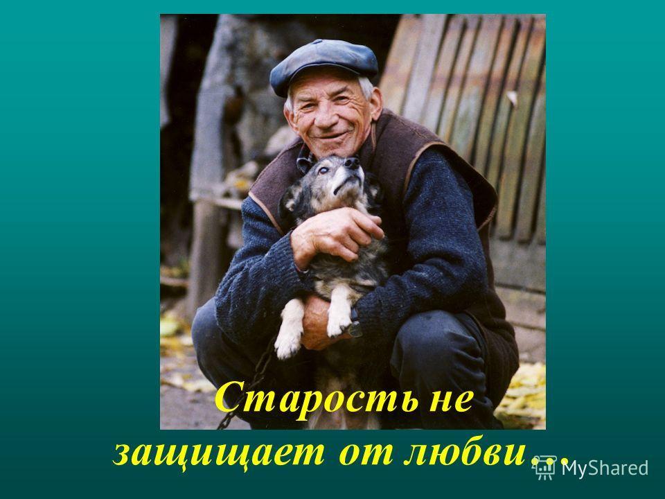 Старость не защищает от любви…