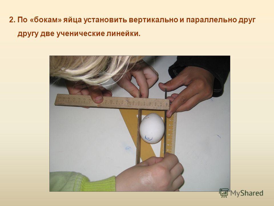 2. По «бокам» яйца установить вертикально и параллельно друг другу две ученические линейки.