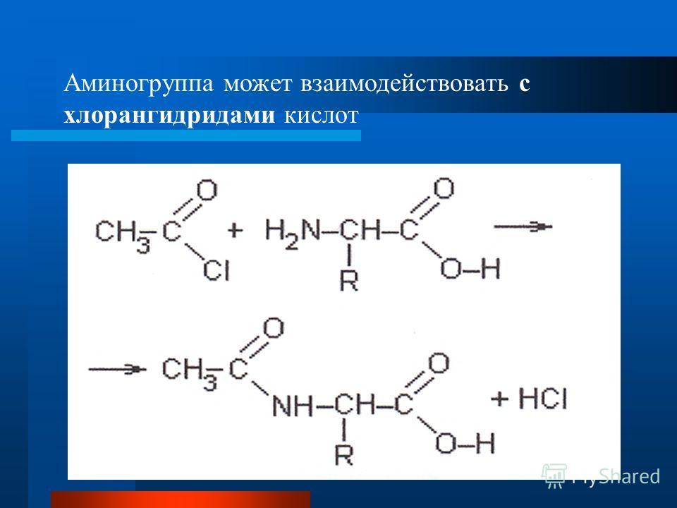 Аминогруппа может взаимодействовать с хлорангидридами кислот
