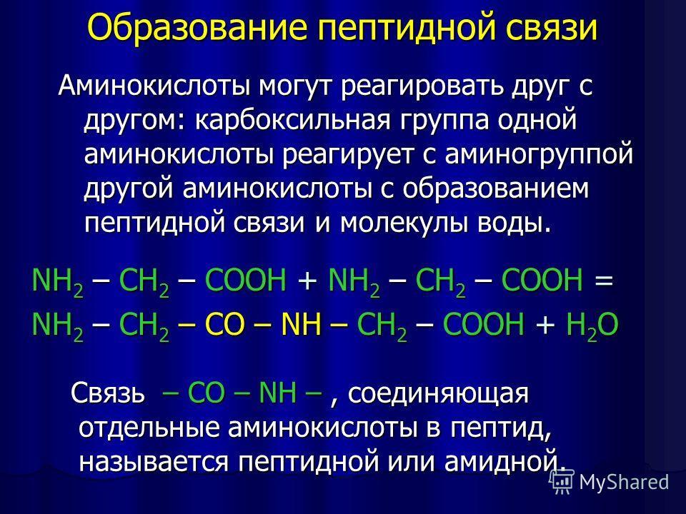 Образование пептидной связи NH 2 – CH 2 – COOH + NH 2 – CH 2 – COOH = NH 2 – CH 2 – CO – NH – CH 2 – COOH + H 2 O Связь – CO – NH –, соединяющая отдельные аминокислоты в пептид, называется пептидной или амидной. Связь – CO – NH –, соединяющая отдельн