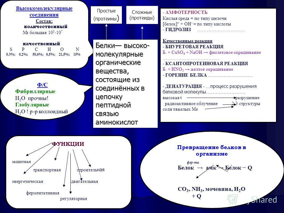 Высокомолекулярные соединения Состав: количественный Mr большая 10 3 -10 7 качественный S P C H O N 0.3%; 0,2%; 50,6%; 6,5%; 21,5%; 15% Ф/С Фибриллярные Н 2 О прочны! Глобулярные Н 2 О ! р-р коллоидный Превращение белков в организме фер-ты Белок амк