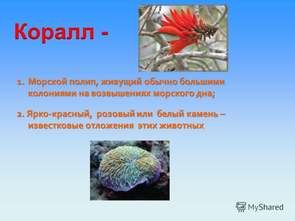 Коралловый - светло-красный, цвета красного коралла Прямое значение Синонимы к переносному значению: Переносное значение Коралловые рифы красные, алые Коралловые губы