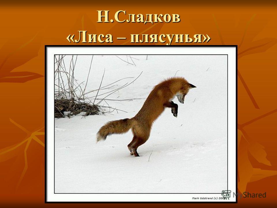 Н.Сладков «Лиса – плясунья»