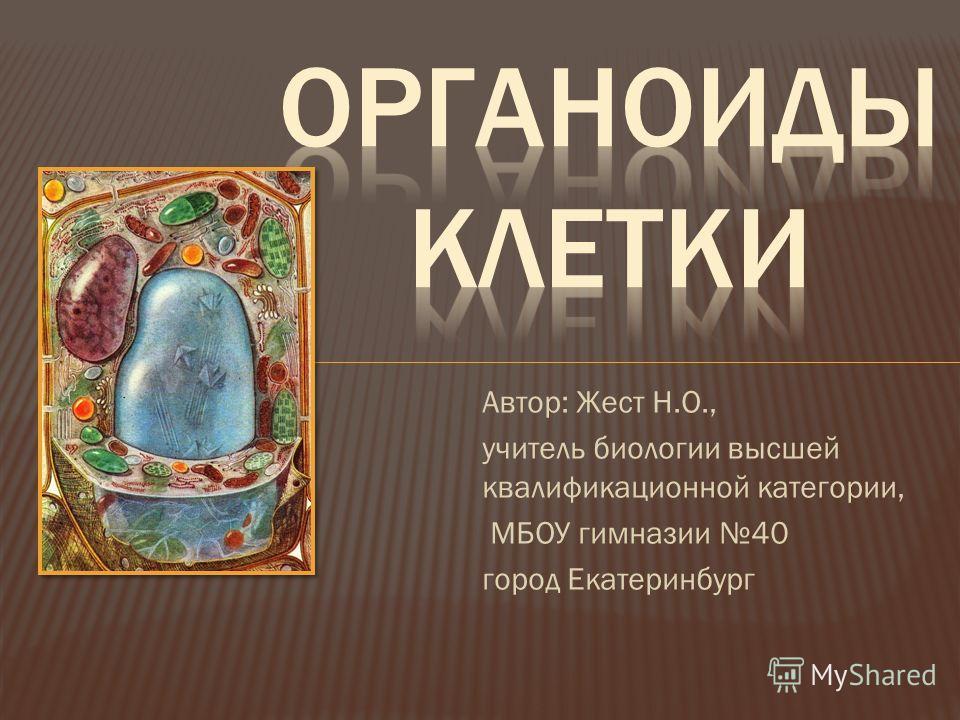 Автор: Жест Н.О., учитель биологии высшей квалификационной категории, МБОУ гимназии 40 город Екатеринбург