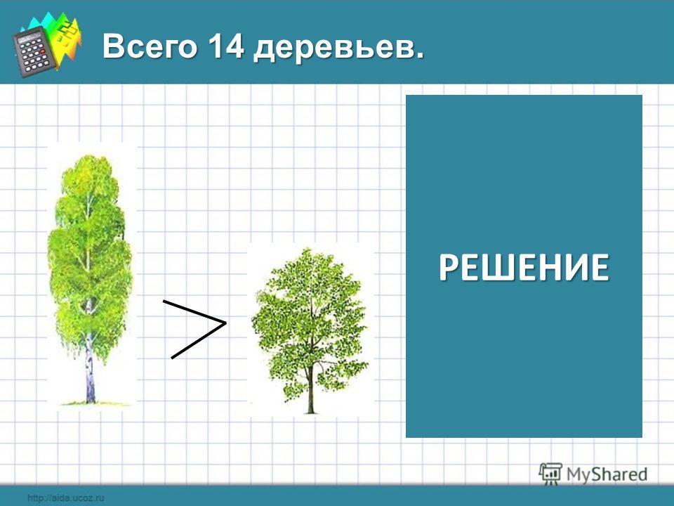 Всего 14 деревьев. РЕШЕНИЕ