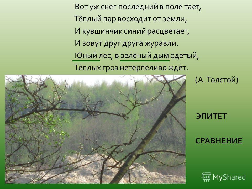Вот уж снег последний в поле тает, Тёплый пар восходит от земли, И кувшинчик синий расцветает, И зовут друг друга журавли. Юный лес, в зелёный дым одетый, Тёплых гроз нетерпеливо ждёт. ( А. Толстой ) ЭПИТЕТ СРАВНЕНИЕ