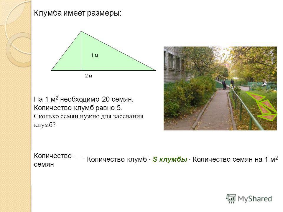 1 м 2 м Количество семян Количество клумб · S клумбы · Количество семян на 1 м 2 Клумба имеет размеры: На 1 м 2 необходимо 20 семян. Количество клумб равно 5. Сколько семян нужно для засевания клумб?