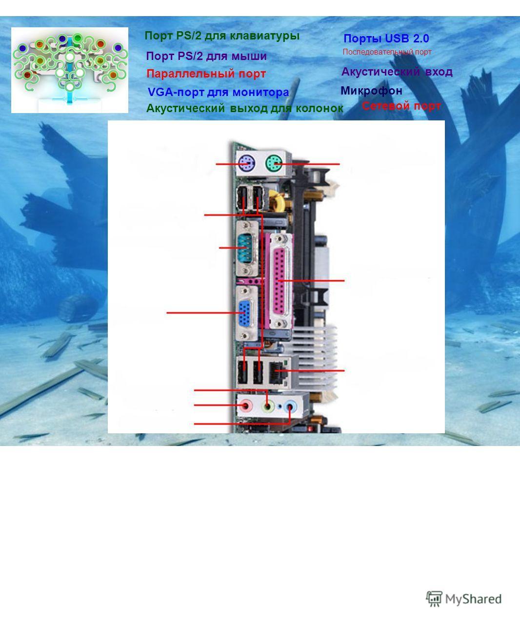 Порт PS/2 для клавиатуры Порт PS/2 для мыши Порты USB 2.0 Последовательный порт Параллельный порт VGA-порт для монитора Акустический выход для колонок Акустический вход Микрофон Сетевой порт