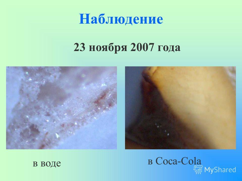 Наблюдение 23 ноября 2007 года в воде в Coca-Cola