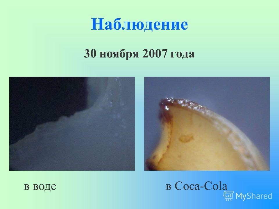 Наблюдение 30 ноября 2007 года в водев Coca-Cola