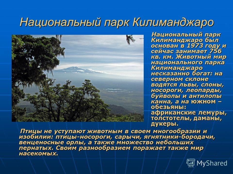 Национальный парк Килиманджаро Национальный парк Килиманджаро был основан в 1973 году и сейчас занимает 756 кв. км. Животный мир национального парка Килиманджаро несказанно богат: на северном склоне водятся львы, слоны, носороги, леопарды, буйволы и