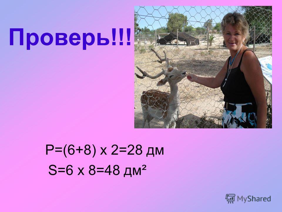 4. Реши задачу Клетка попугая имеет размеры: Вольер тигра имеет размеры: Бассейн для дельфинов имеет размеры: а = 6 дма = 8 ма = 30 м в = 8 дмв = ? м Р = ? дмР = ? мР = 70 м S = ? дм² S = 56 м² S = ? м²