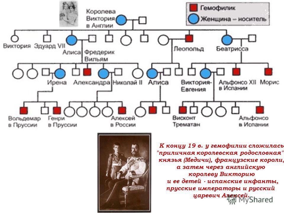 К концу 19 в. у гемофилии сложилась приличная королевская родословная - князья (Медичи), французские короли, а затем через английскую королеву Викторию и ее детей - испанские инфанты, прусские императоры и русский царевич Алексей.