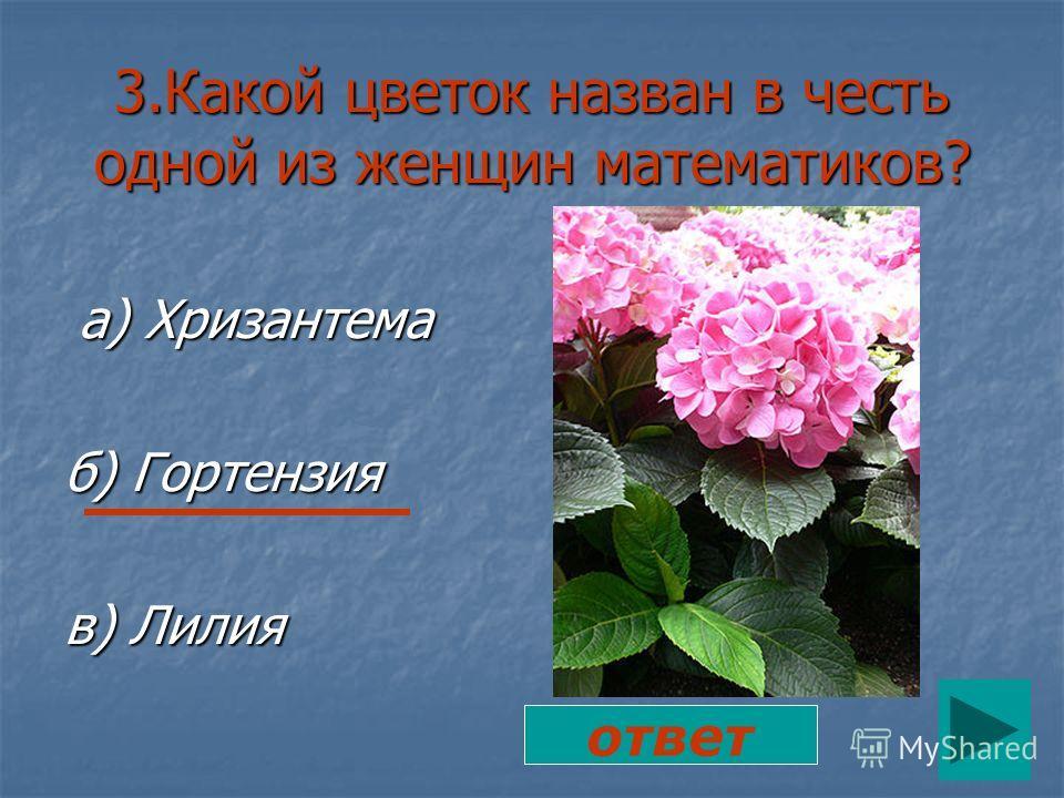 3.Какой цветок назван в честь одной из женщин математиков? а) Хризантема б) Гортензия в) Лилия ответ