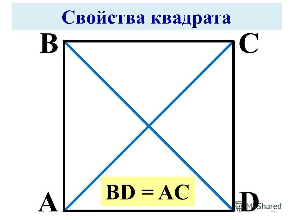 A BC D Свойства квадрата BD = AC 19