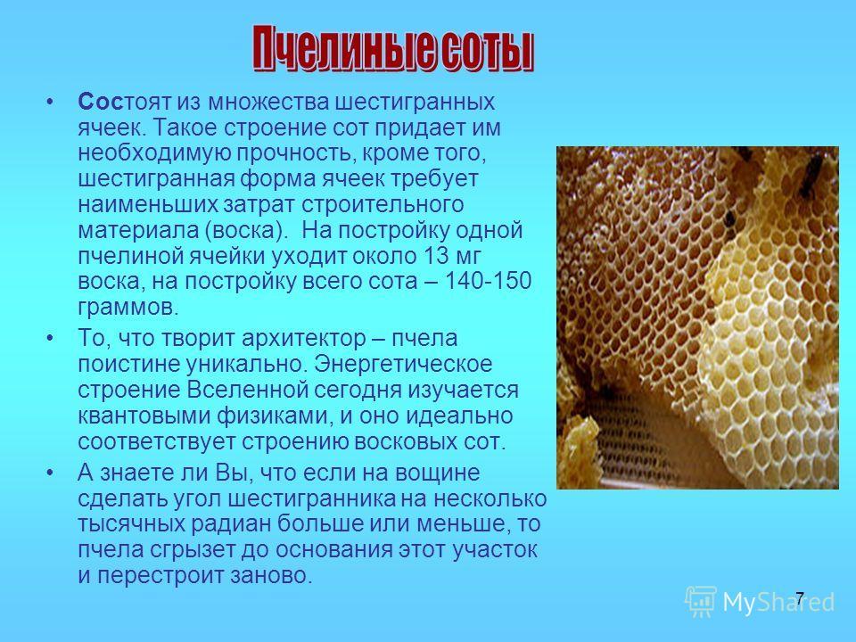 7 Состоят из множества шестигранных ячеек. Такое строение сот придает им необходимую прочность, кроме того, шестигранная форма ячеек требует наименьших затрат строительного материала (воска). На постройку одной пчелиной ячейки уходит около 13 мг воск