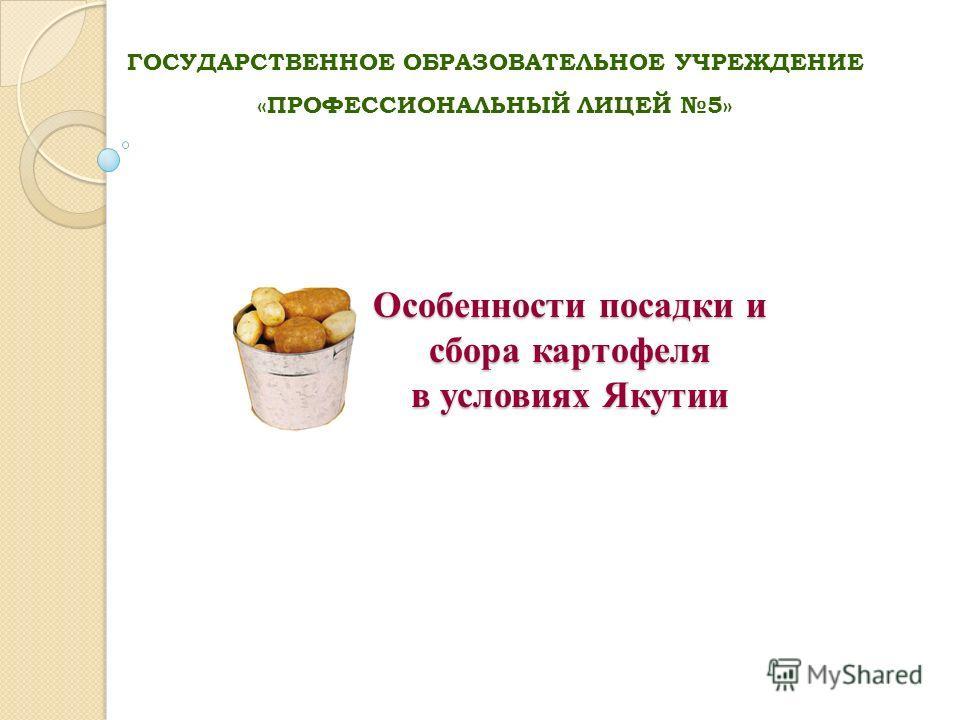 Особенности посадки и сбора картофеля в условиях Якутии ГОСУДАРСТВЕННОЕ ОБРАЗОВАТЕЛЬНОЕ УЧРЕЖДЕНИЕ «ПРОФЕССИОНАЛЬНЫЙ ЛИЦЕЙ 5»
