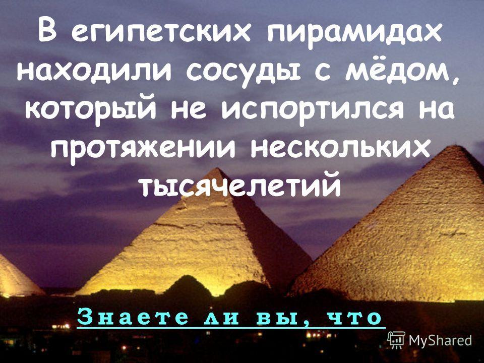 Знаете ли вы, что В египетских пирамидах находили сосуды с мёдом, который не испортился на протяжении нескольких тысячелетий