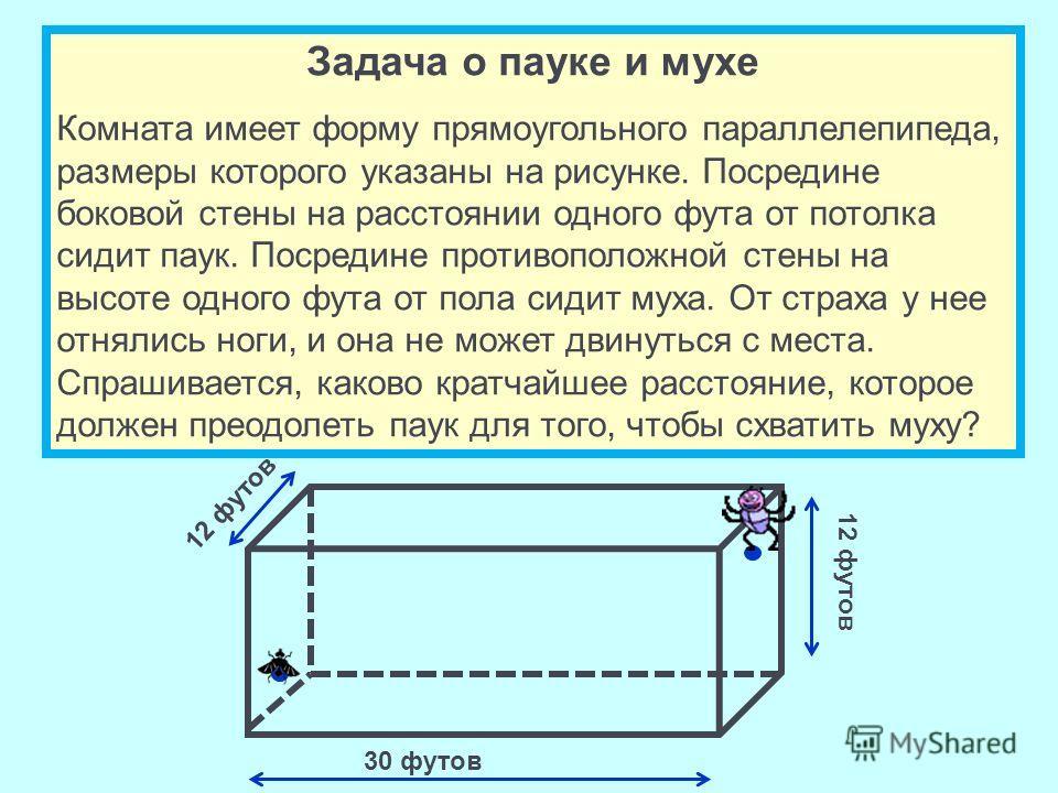 Задача о пауке и мухе Комната имеет форму прямоугольного параллелепипеда, размеры которого указаны на рисунке. Посредине боковой стены на расстоянии одного фута от потолка сидит паук. Посредине противоположной стены на высоте одного фута от пола сиди