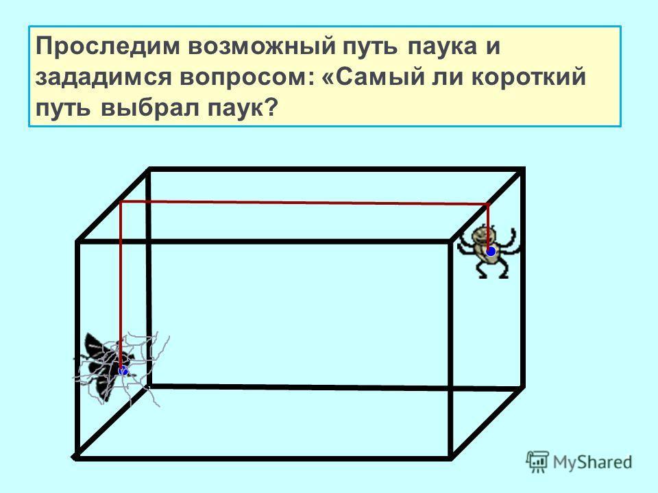 4 Проследим возможный путь паука и зададимся вопросом: «Самый ли короткий путь выбрал паук?