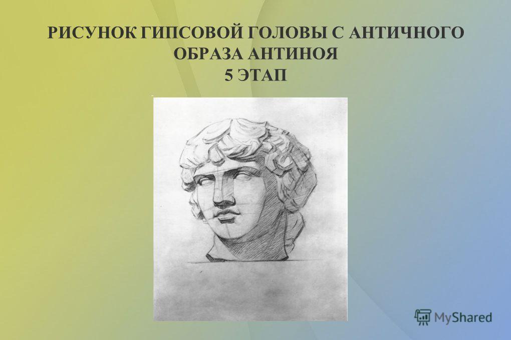 РИСУНОК ГИПСОВОЙ ГОЛОВЫ С АНТИЧНОГО ОБРАЗА АНТИНОЯ 4 ЭТАП