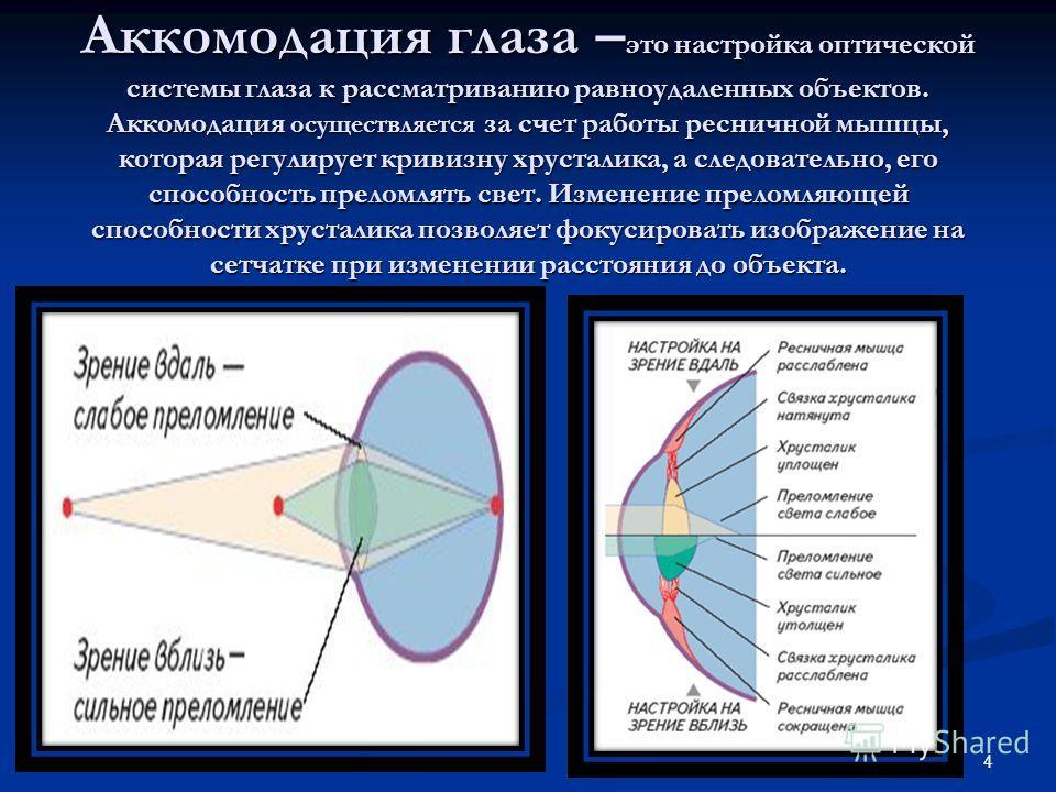 Аккомодация глаза – это настройка оптической системы глаза к рассматриванию равноудаленных объектов. Аккомодация осуществляется за счет работы ресничной мышцы, которая регулирует кривизну хрусталика, а следовательно, его способность преломлять свет.
