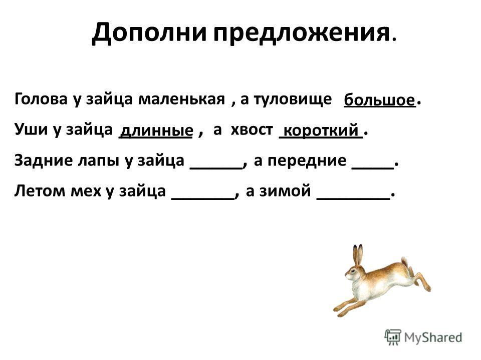 Дополни предложения. Голова у зайца маленькая, а туловище ________. Уши у зайца _______, а хвост ________. Задние лапы у зайца _____, а передние ____. Летом мех у зайца ______, а зимой _______. большое длинныекороткий