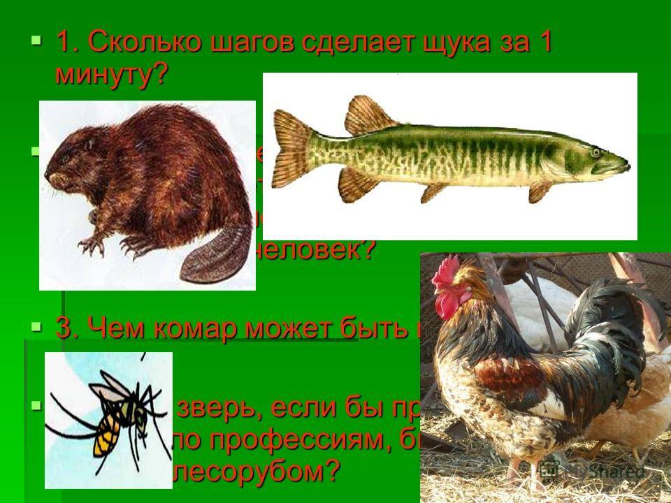 Конкурс КАПИТАНОВ Конкурс КАПИТАНОВ