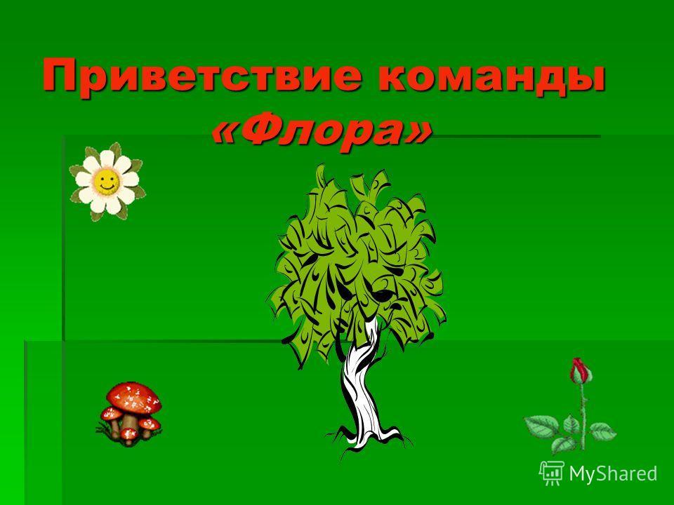ЭМБЛЕМЫ КОМАНД ЭМБЛЕМЫ КОМАНД