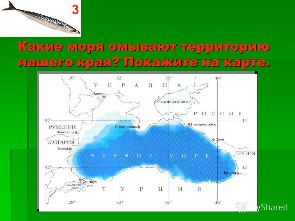 Как называется самая главная река Краснодарского края? Покажите её местонахождение. Река Кубань 2