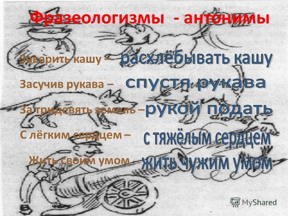 Фразеологизмы - антонимы Заварить кашу – Засучив рукава – За тридевять земель – С лёгким сердцем – Жить своим умом -