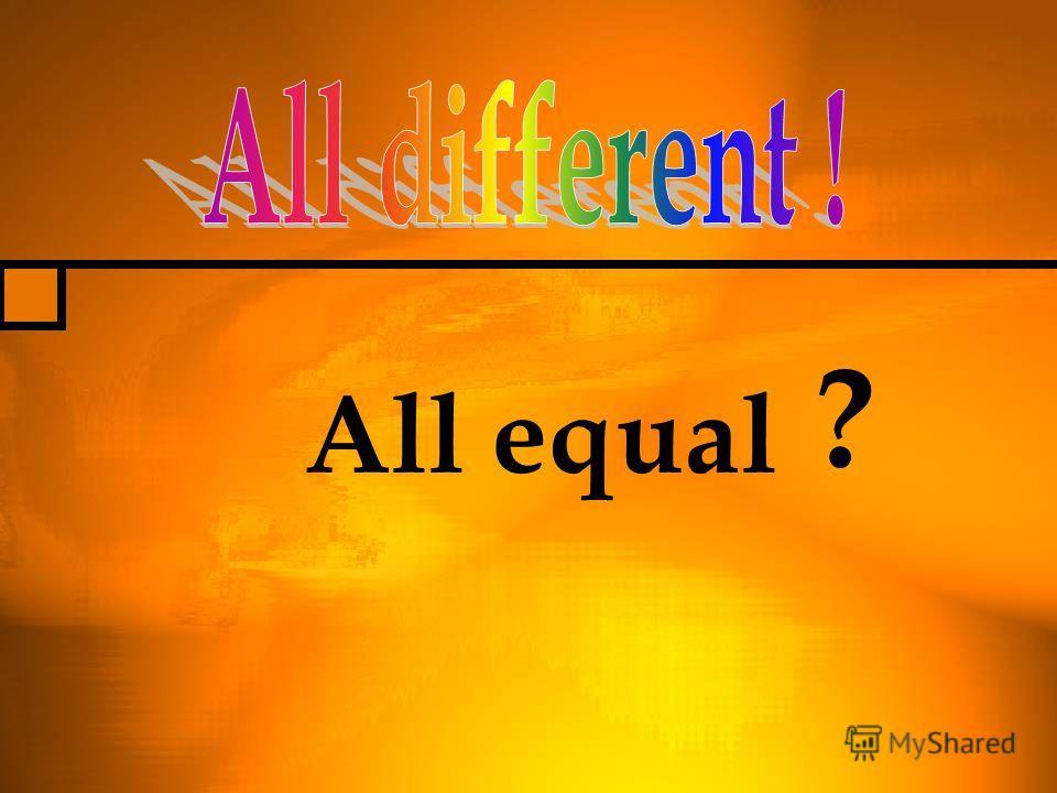 All equal ?