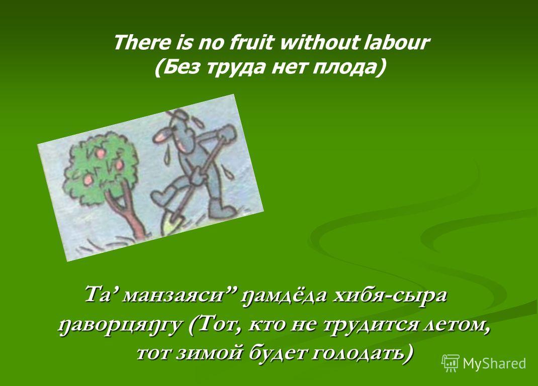 Та манзаяси ŋамдёда хибя-сыра ŋаворцяŋгу (Тот, кто не трудится летом, тот зимой будет голодать) There is no fruit without labour (Без труда нет плода)