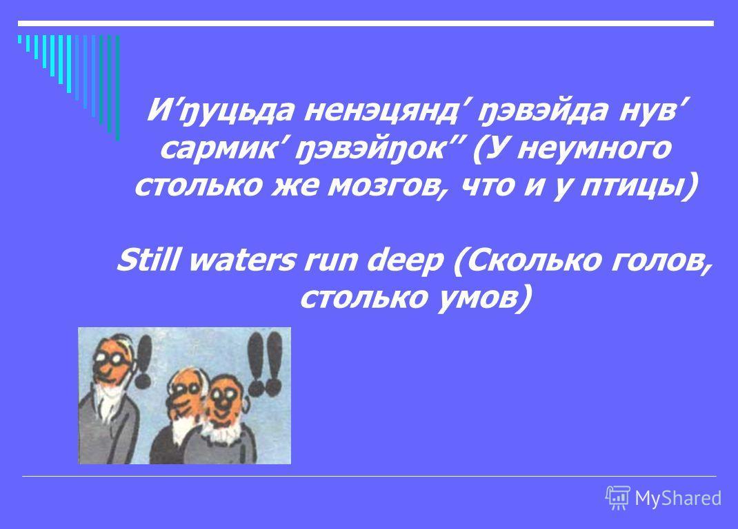 Иŋуцьда ненэцянд ŋэвэйда нув сармик ŋэвэйŋок (У неумного столько же мозгов, что и у птицы) Still waters run deep (Сколько голов, столько умов)