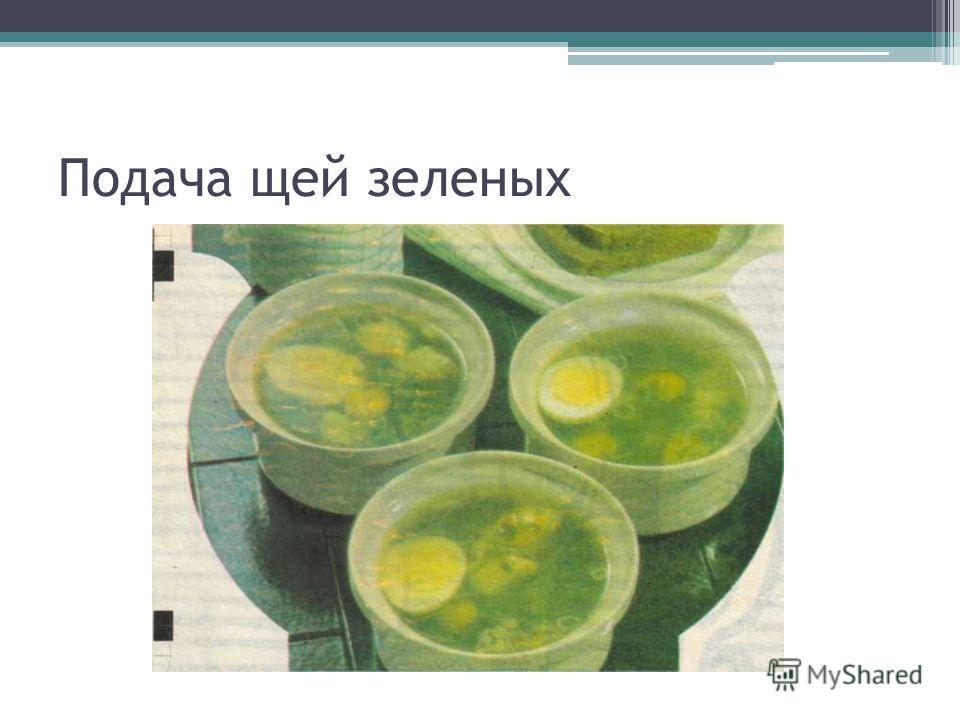 Подача щей зеленых