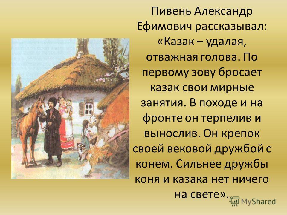 Пивень Александр Ефимович рассказывал: «Казак – удалая, отважная голова. По первому зову бросает казак свои мирные занятия. В походе и на фронте он терпелив и вынослив. Он крепок своей вековой дружбой с конем. Сильнее дружбы коня и казака нет ничего