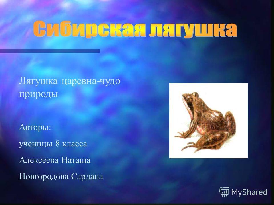Лягушка царевна-чудо природы Авторы: ученицы 8 класса Алексеева Наташа Новгородова Сардана
