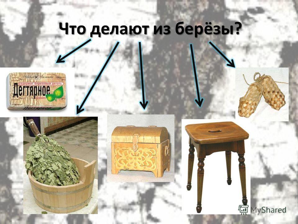 Что делают из берёзы?