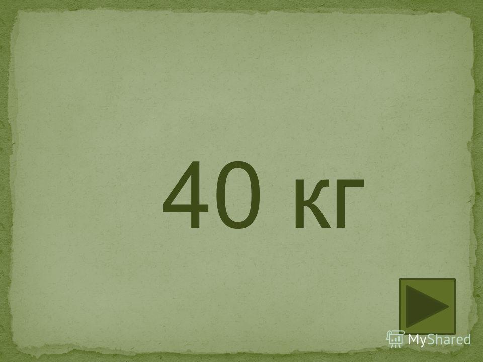 40 кг