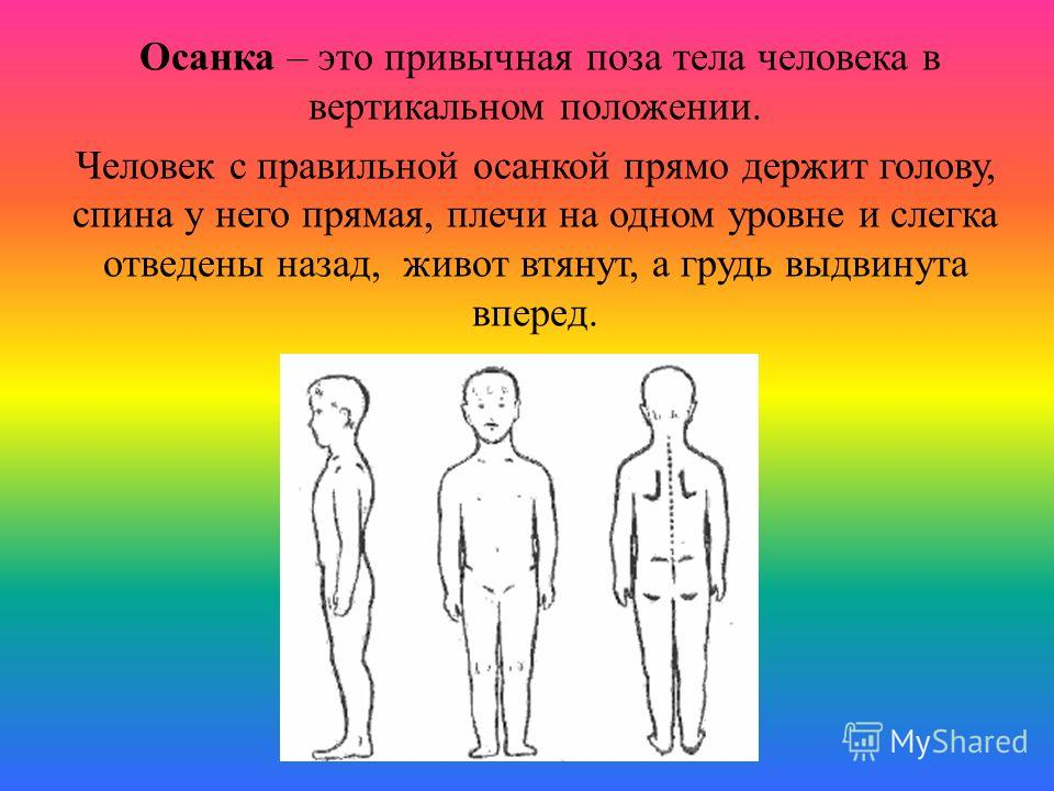 Осанка – это привычная поза тела человека в вертикальном положении. Человек с правильной осанкой прямо держит голову, спина у него прямая, плечи на одном уровне и слегка отведены назад, живот втянут, а грудь выдвинута вперед.